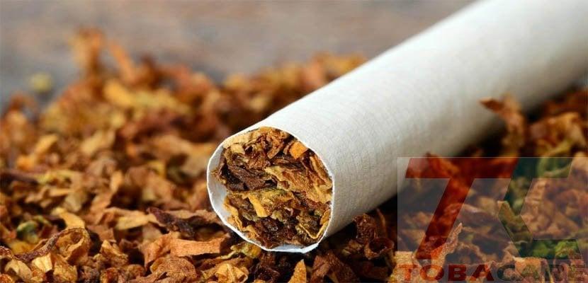 Lý do bạn khó bỏ thuốc lá