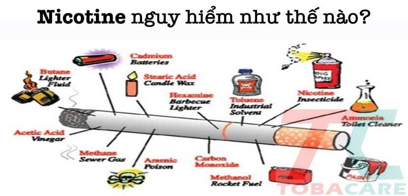 Nicotine có nguy hiểm không