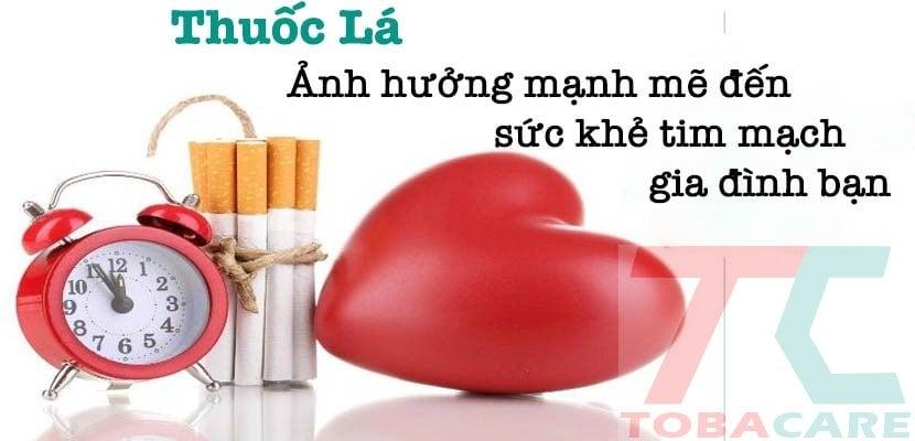 Hút thuốc lá ảnh hưởng đến tim mạch