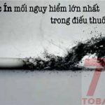 Hắc ín trong thuốc lá có gây nguy hiểm đến tế bào ung thư.