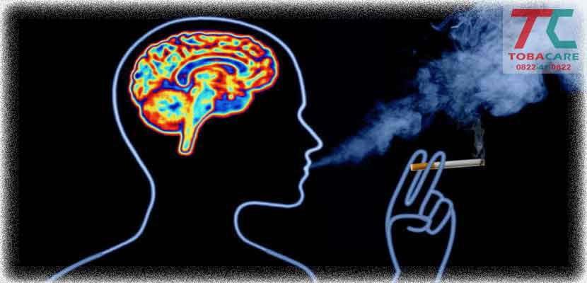 Tác hại của thuốc lá đến bộ não