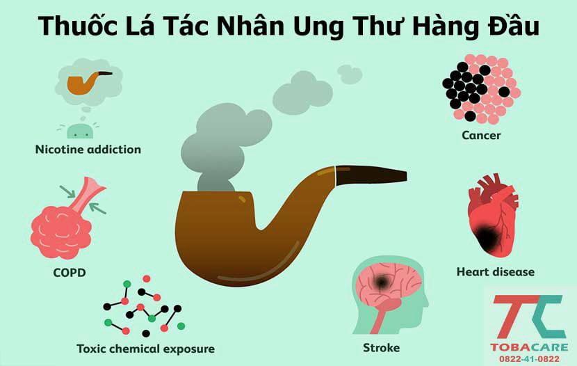 Thuốc lá là nguyên nhân gây ra vấn đề ung thư của cơ thể