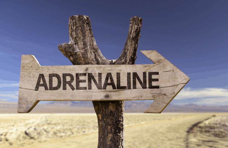 """Adrenaline rush: Cơn """"sốt"""" khiến bạn muốn bỏ chạy!"""