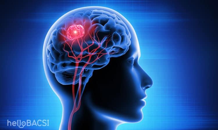 Ăn hạt hướng dương có bị teo não không