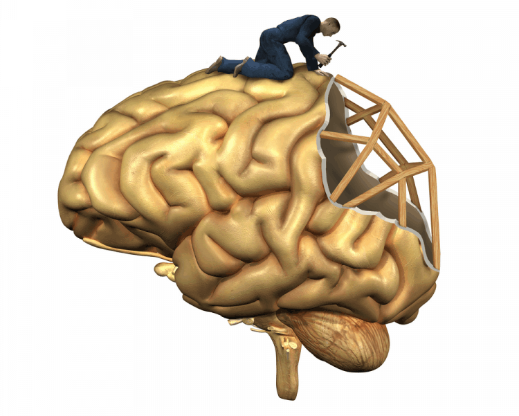 Bí quyết giúp bạn phát triển não bộ