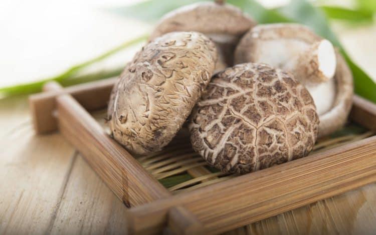 Cách tăng cường hệ miễn dịch: Ăn nấm