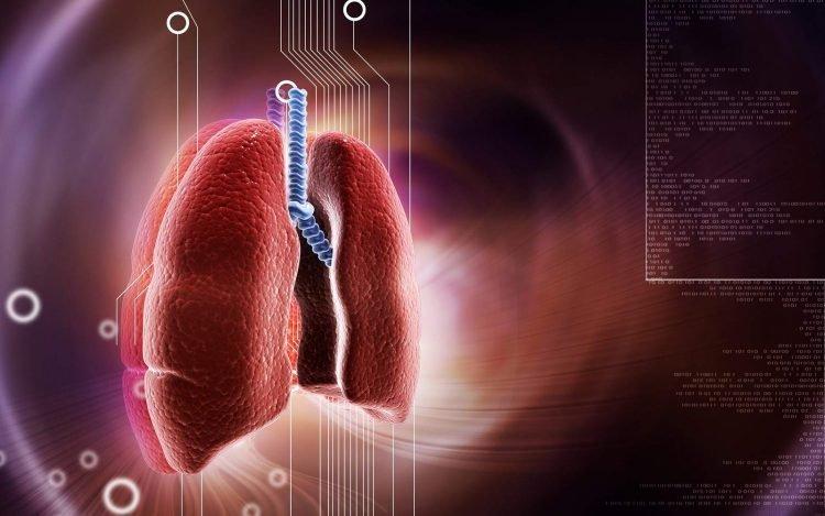 bệnh liên quan đến đường hô hấp